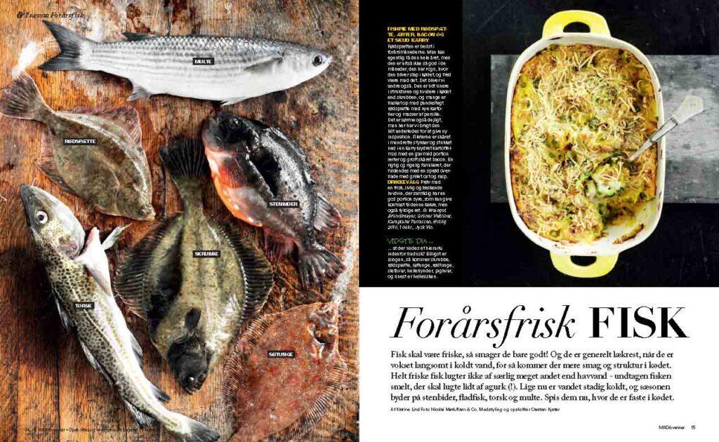 Carsten-Kyster-Forårsfrisk-fisk