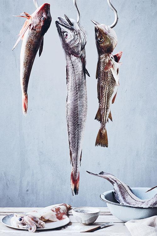 carsten-kyster-foodstylist-madstylist-fisk-paa-kroken-1