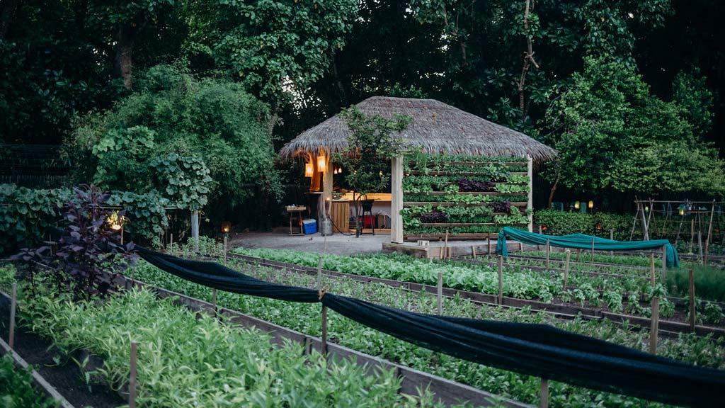 Carsten-Kyster-Soneva-Green-Garden-Restaurant-5