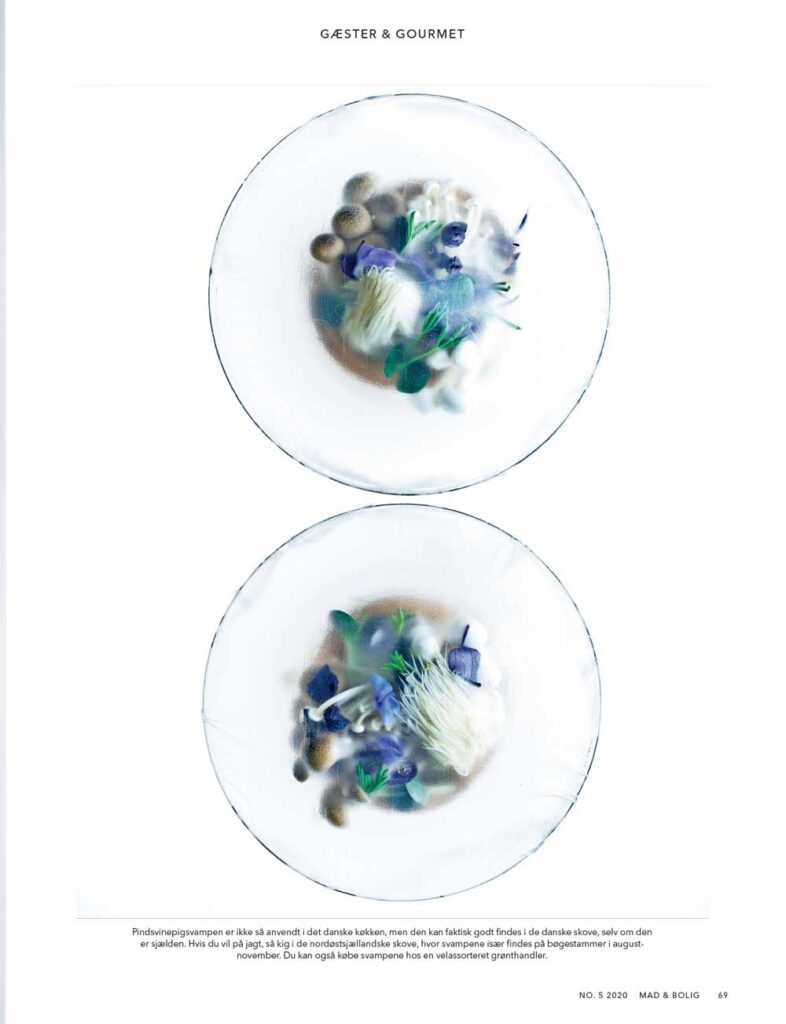 In thin layers Carsten Kyster Foodstyling 2